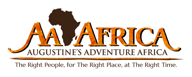 AA-Africa-Logo-Textured-150dpi_preview(1)
