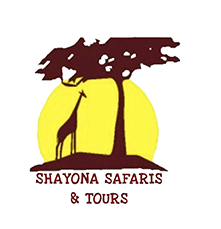 Shayona-Safaris-Tours